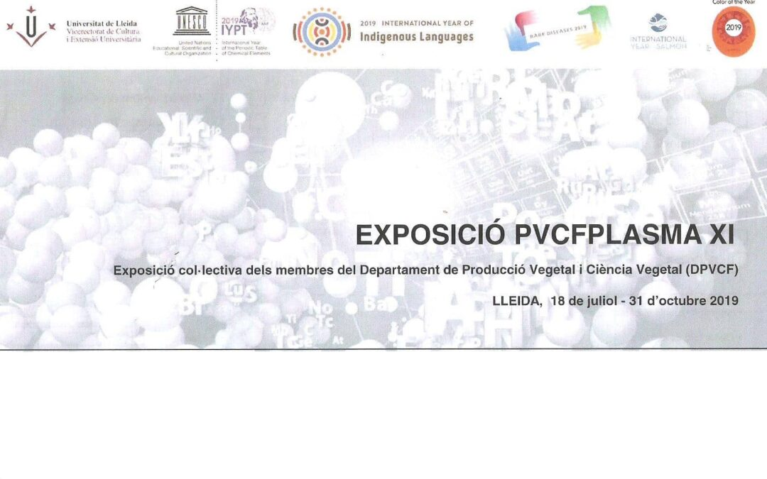 PVCPLASMA XI